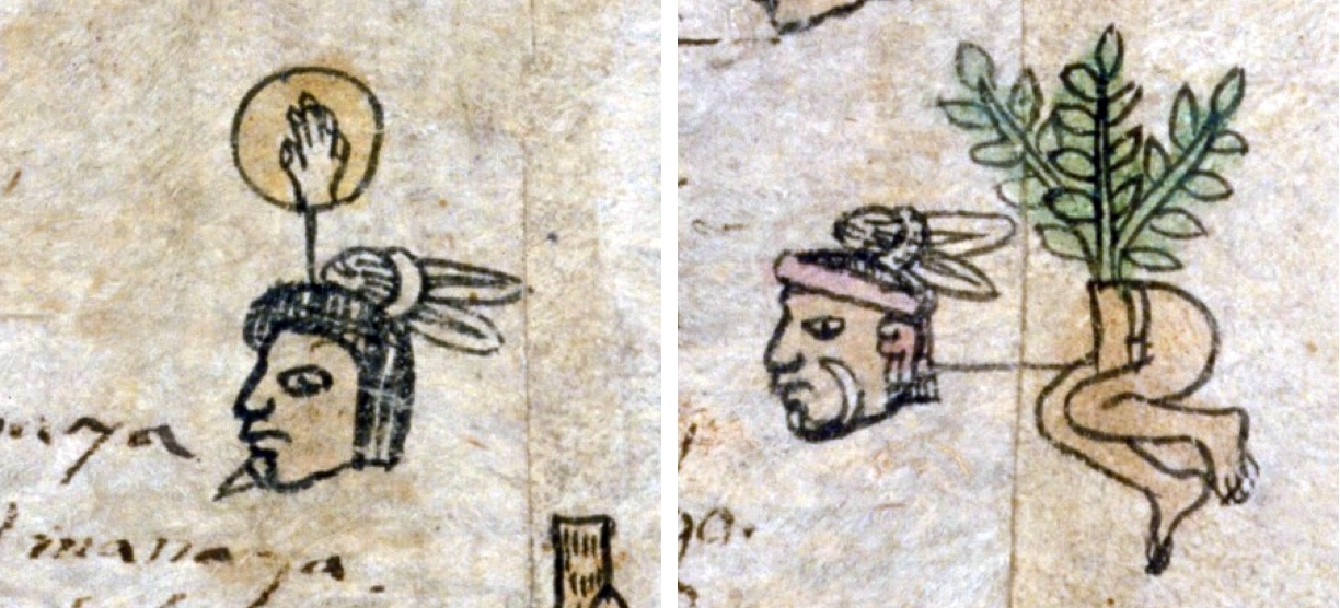 FIGURE 25. Ethnicity and labret styles on folio 11v of the Matrícula de Tributos. A prisoner from Tlaxcala wears a small white labret (left) and a prisoner from Huexotzingo wears a long curved labret (right).