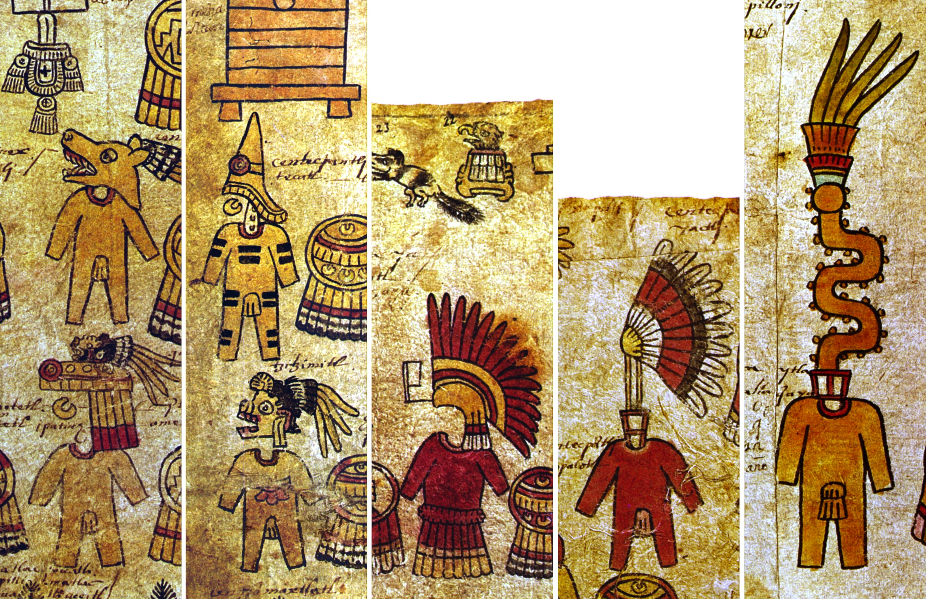 FIGURE 35. Additional styles of warrior costume the Matrícula de Tributos. From left to right, these are Coyote (top) and Canid Deity (bottom; note the Huaxtec nose ornament as well as the dog's head on top of the headdress); Death (bottom, with the Huaxtec style above); Quetzal Feather (red version); Twisted Feather (note the red support rack); and Umbilical Cord (note the red support rack). All examples are from folio 3v except the Umbilical Cord, which is from 12r.