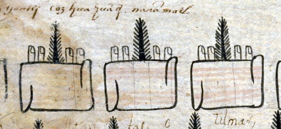 FIGURE 22. The use of fingers to represent lengths of cloth on folio 9r of the Matrícula de Tributos.