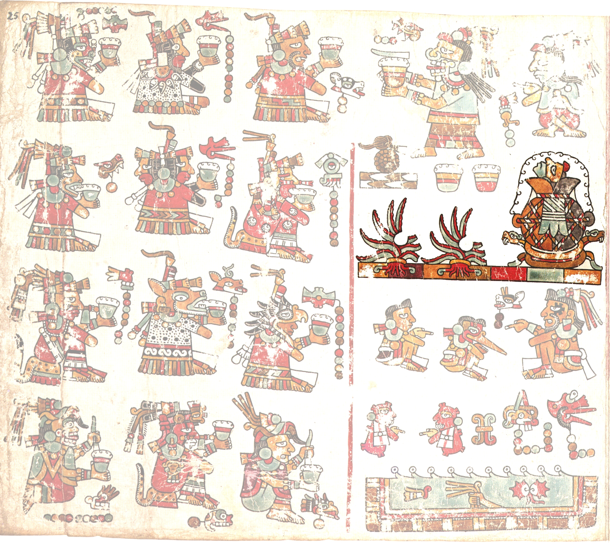 FIGURE 23. Page 25 of the Codex Vienna.