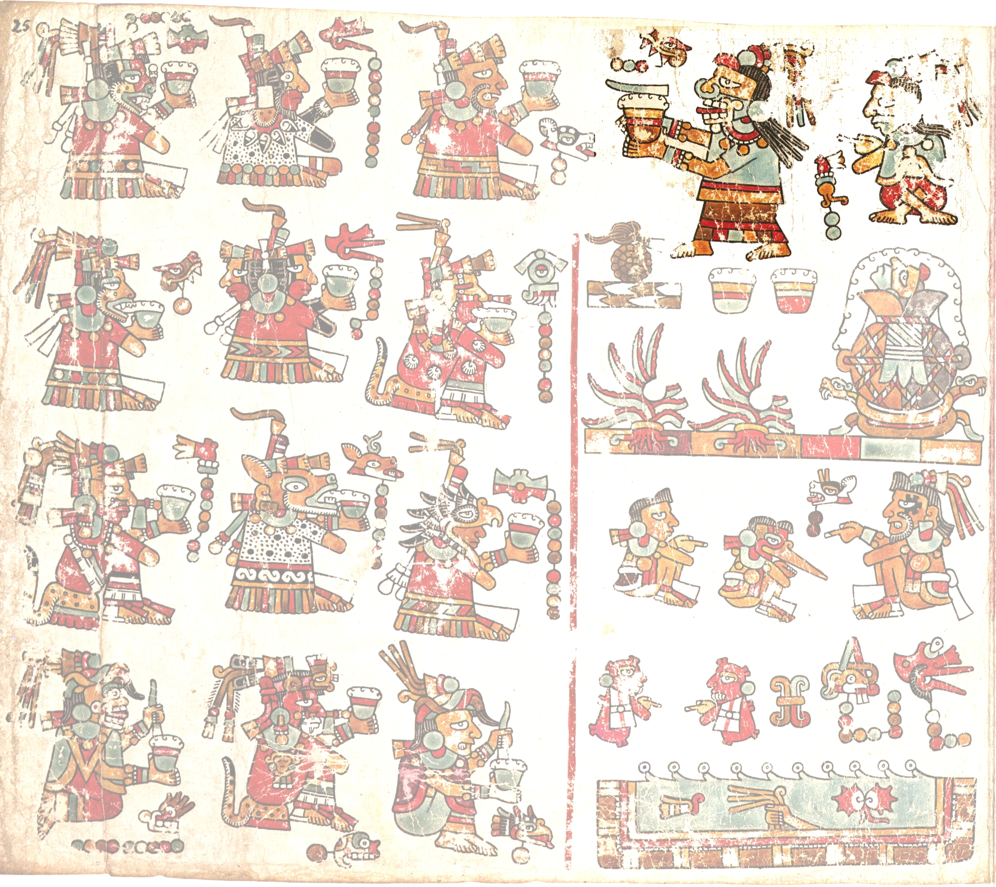 FIGURE 25. Page 25 of the Codex Vienna.