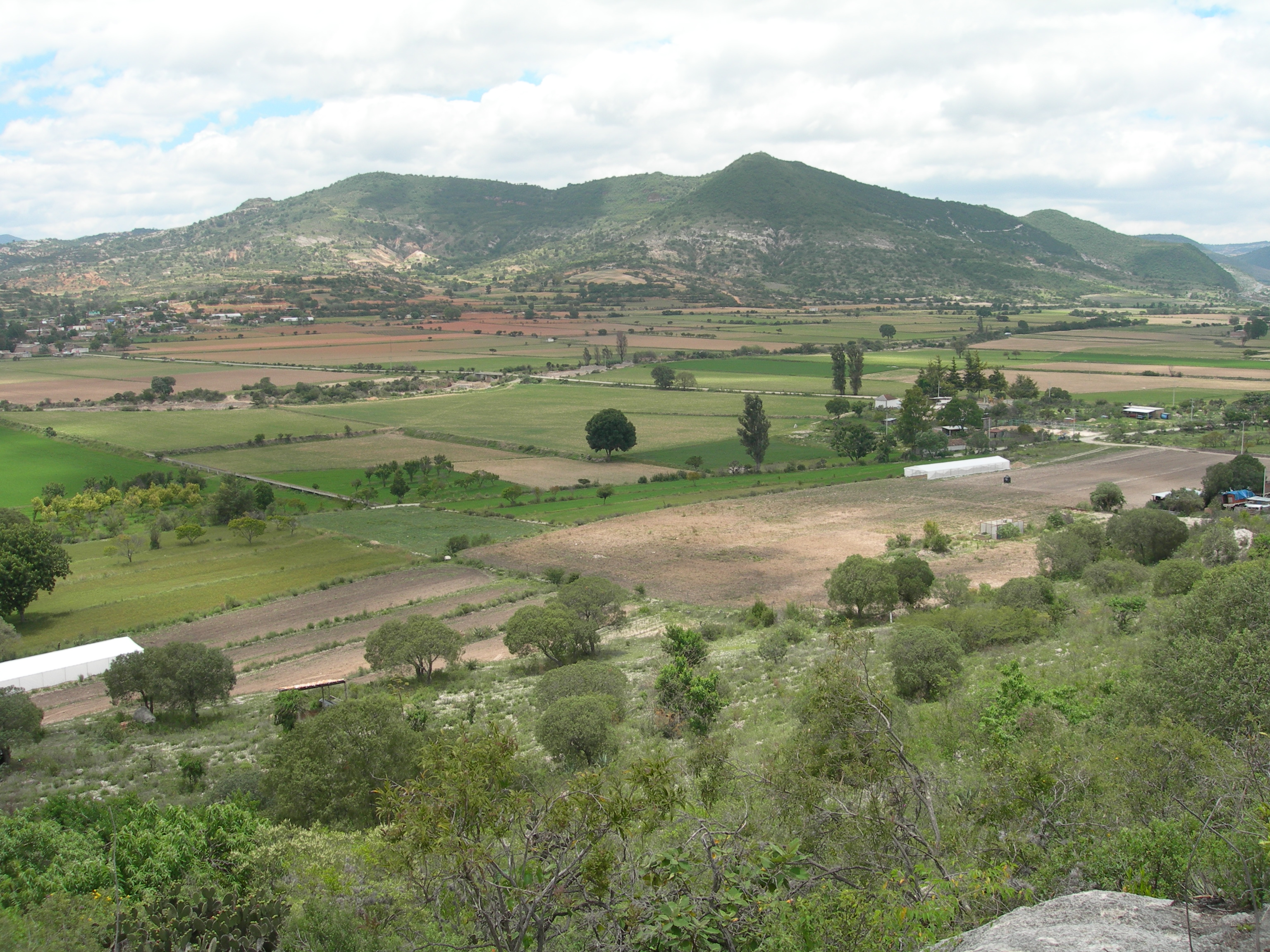 FIGURE 13. The hill of Yucuñudahui, viewed from the south. June 2007. Photo by Byron Hamann.